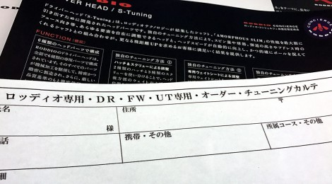 ロッディオ専用カルテの登場!